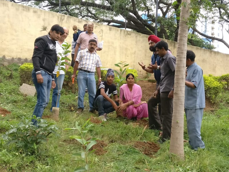 About to plant the saplings, for a better future